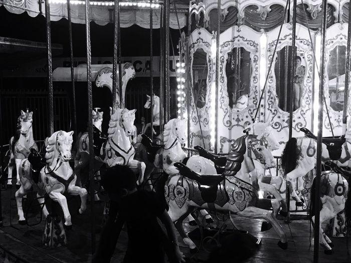 Carousel Horses At Amusement Park