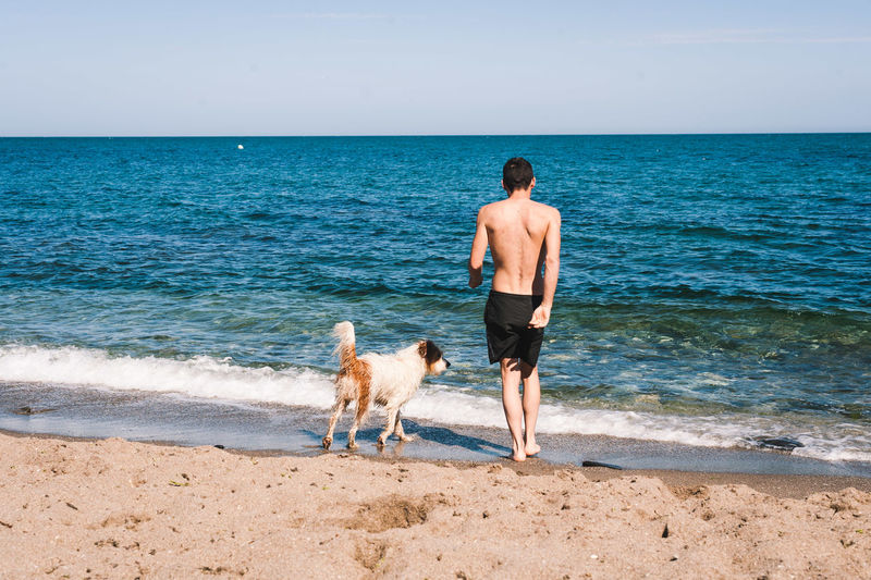 Rear view of man with dog on beach