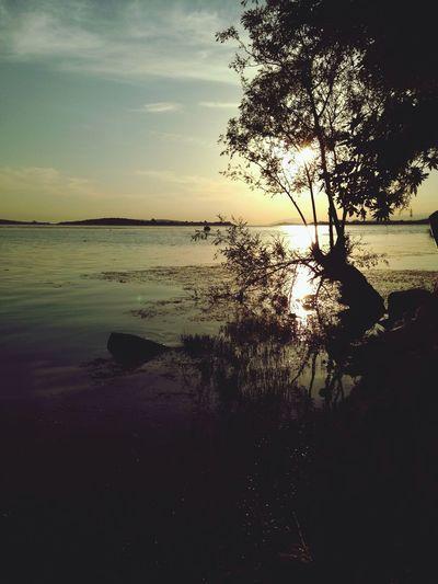 Gölyazı ..