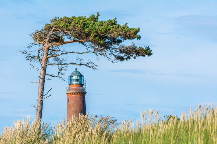 Architecture Built Structure Day Lighthouse Lighttower Nature No People Outdoors Protection Windflüchter Nikon D7100 Summer Tree Wind Lost In The Landscape
