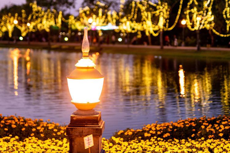 Illuminated lamp by lake at night