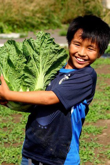 Portrait of smiling boy holding lettuce