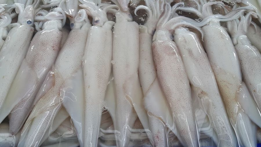 Full frame shot of seafood for sale