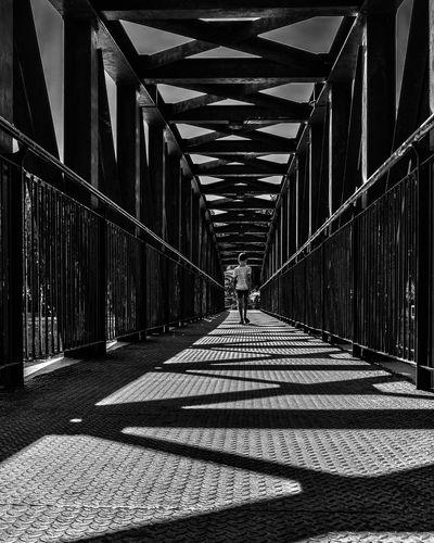 Bridge Focused