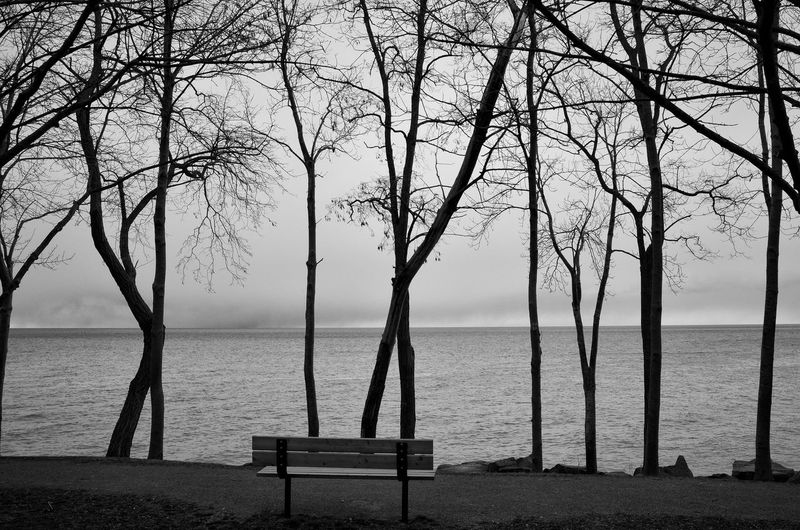 Park Bench By Sea Against Sky