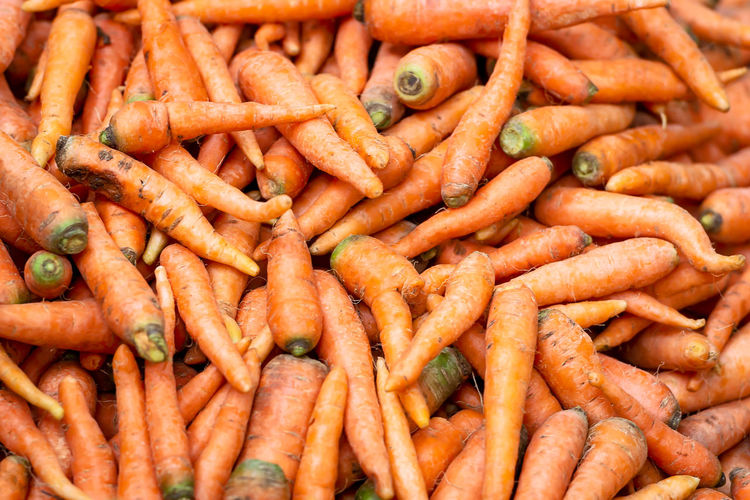 Carrots Carrot Food Background Fresh Organic Vegetable Healthy Orange Root Ripe Farm Nature Green Summer Agriculture Ground Harvest Nutrition Raw Vegetarian Diet Ingredient Gardening Isolated Close Up Bunch Red Plant Closeup Natural Object Leaf Soil Group Garden Female Rural Composition Vitamin