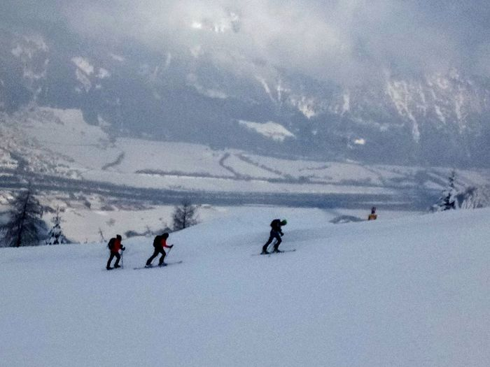 Snow Ski Holiday Cold Temperature Warm Clothing Winter Snowboarding Adventure Snowing Tree Frozen Deep Snow Ski Track Skiing Snowcapped Mountain