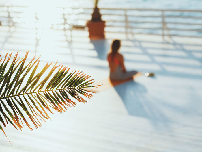 High angle view of woman sitting on promenade while palm leaf in foreground
