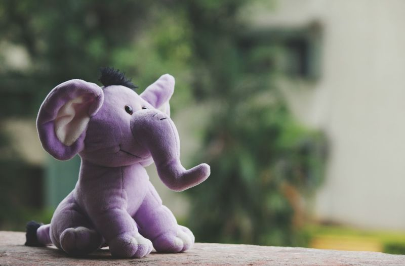Stuffed Toy Cute Close-up Elephant ♥ Animal Representation Toys Toddlerlife Simple Things In Life Simple Things Toysphotography Soft Toys Cuteness Day Coloured Animals No People Different View Different Photos