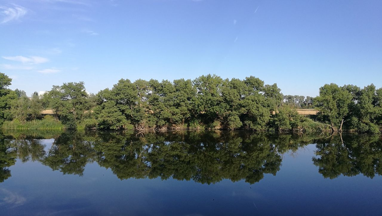 reflection, tree, lake, water, nature, waterfront, beauty in nature, no people, outdoors, sky, tranquil scene, growth, day, tranquility, scenics