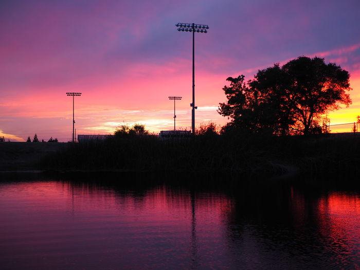 Tree Water Sunset Sport Reflection Sky