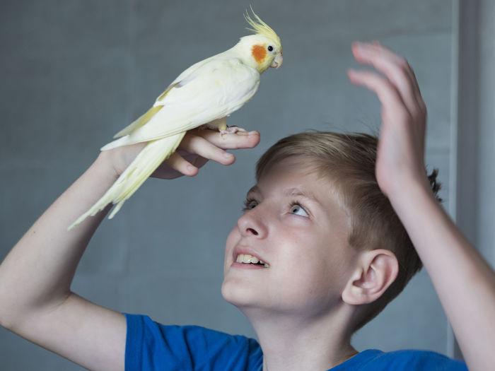 Portrait of happy boy holding bird