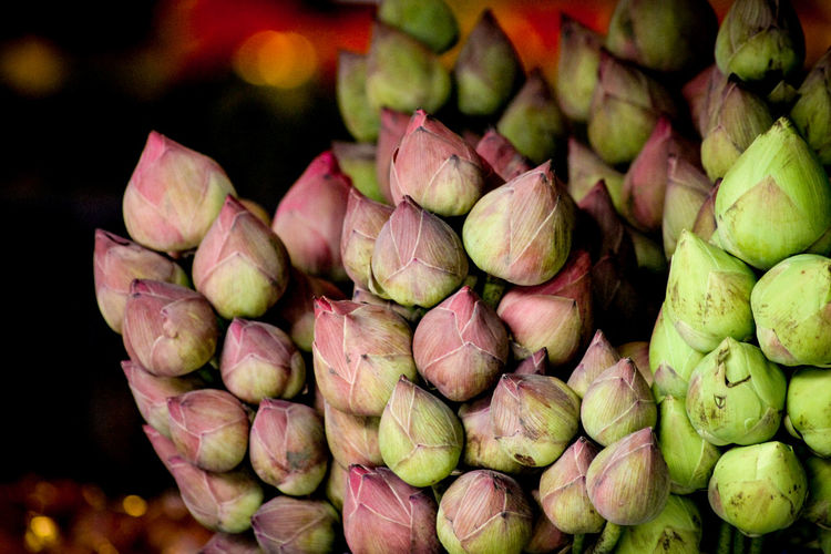 Lotus Bud Lotus For Buddha Food Food And Drink Fruit Healthy Eating Freshness No People Close-up Large Group Of Objects Market Night Indoors  Still Life Texture In Nature Texture Pattern, Texture, Shape And Form Flowers Flower Market Culture And Tradition Thailand