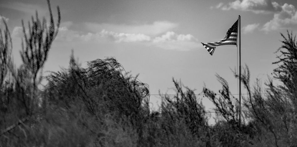 American flag in the distance. Eyemphotography Photography Outdoors Walking Around Tucson Arizona  Thephotographer Surreptitious Night American Flag Black & White Monochrome