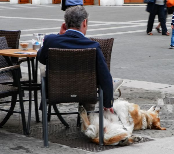 In The Street Streetphotography Walking Around From My Point Of View No Filters  Showcase March Taking Photos Italy Italia Trieste Outside Waiting Dog Cuddles Cuddling Love At The Bar Hanging Out