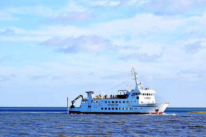 EyeEm Selects Nautical Vessel Sea Sky