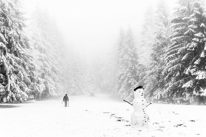 Deepfreeze Blackandwhite Exploring New Ground Snowman Weather Man Story Time Winter Trees Enjoying Life RePicture Travel Market Bestsellers June 2016 Bestsellers The Week On EyeEm Your Ticket To Europe Shades Of Winter