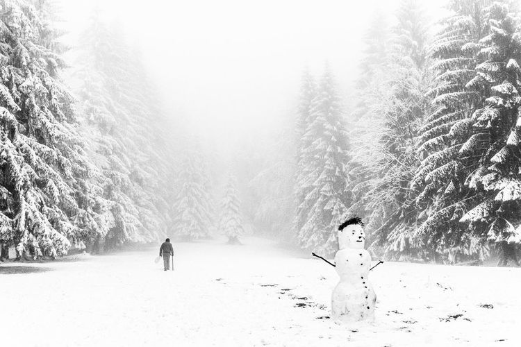 Snowman On Field Amidst Pine Trees