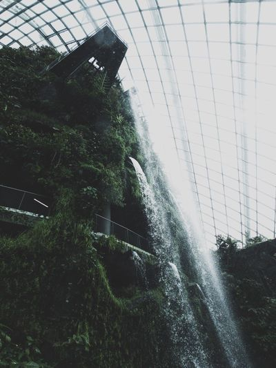 Indoor waterfall Garden Singapore Water Waterfall Greenhouse Nature Indoors  Plant Architecture Connected By Travel Lost In The Landscape EyeEmNewHere