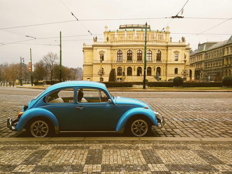 Käfer VW Beetle