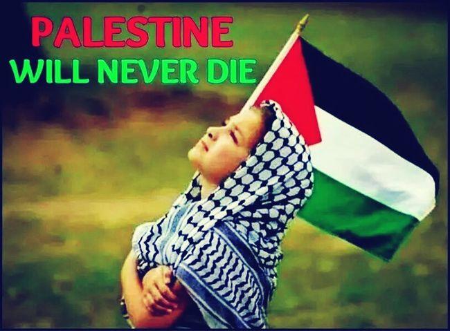tomorrow will be free Freedom Freegaza Freepalestine I Stand With Palestine