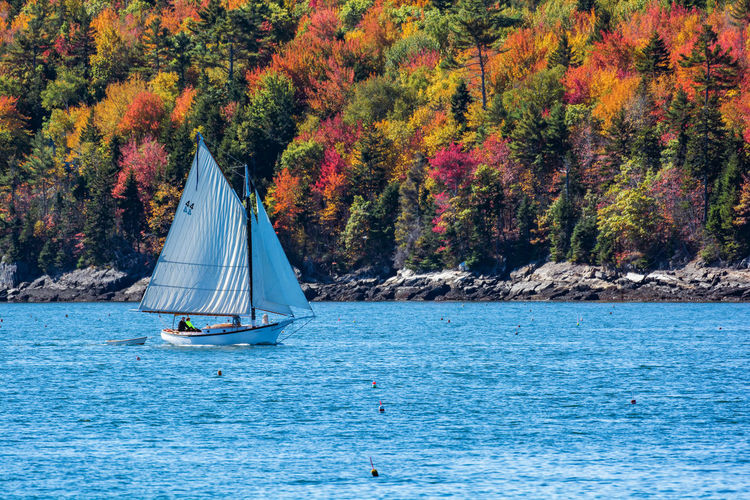 Sailboat Sailing In Sea Against Sky During Autumn