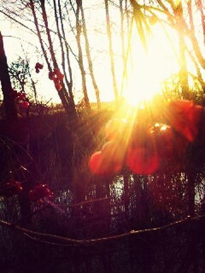 Lost in the winterwonderland^^ wunderbare Zeit im Winter gehabt :-* From Where I Stand