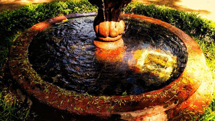 Fountain High