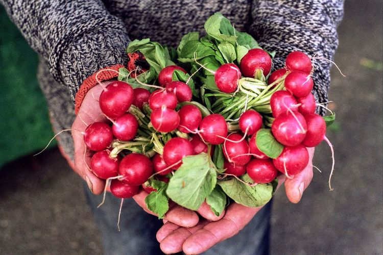 Midsection Of Man Holding Radishes While Standing Outdoors