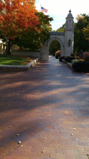 Indiana University College Architecture Built Structure Arch Autumn Autumn Colors Limestone Limestone Architecture Tree City Sky Day Outdoors No People Beauty In Nature University Flowers Brick Brick Walkway United States Flag  Flower