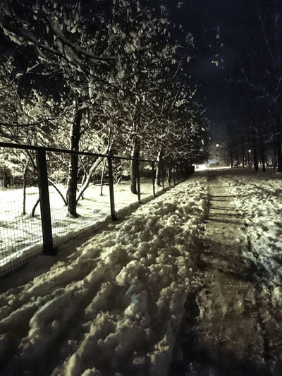 Tree Nature Beauty In Nature No People Outdoors Growth Snow ❄ Winter Is Coming Angelina B Sony Xperia Photography. First Snow Kids Happy Wanderlife Early Snowfall Happy Snowflakes Snowfall Evening Night Snow Nature Cold Temperature Winter Beauty In Nature Cloud - Sky