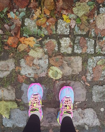 Shoe Multi Colored Outdoors Human Leg Standing Running Asics Shoe Multi Colored Personal Perspective Autumn Leaves