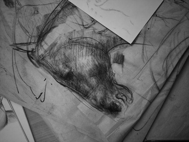 Kuda Horse Drawing ArtWork Sketch Charcoal