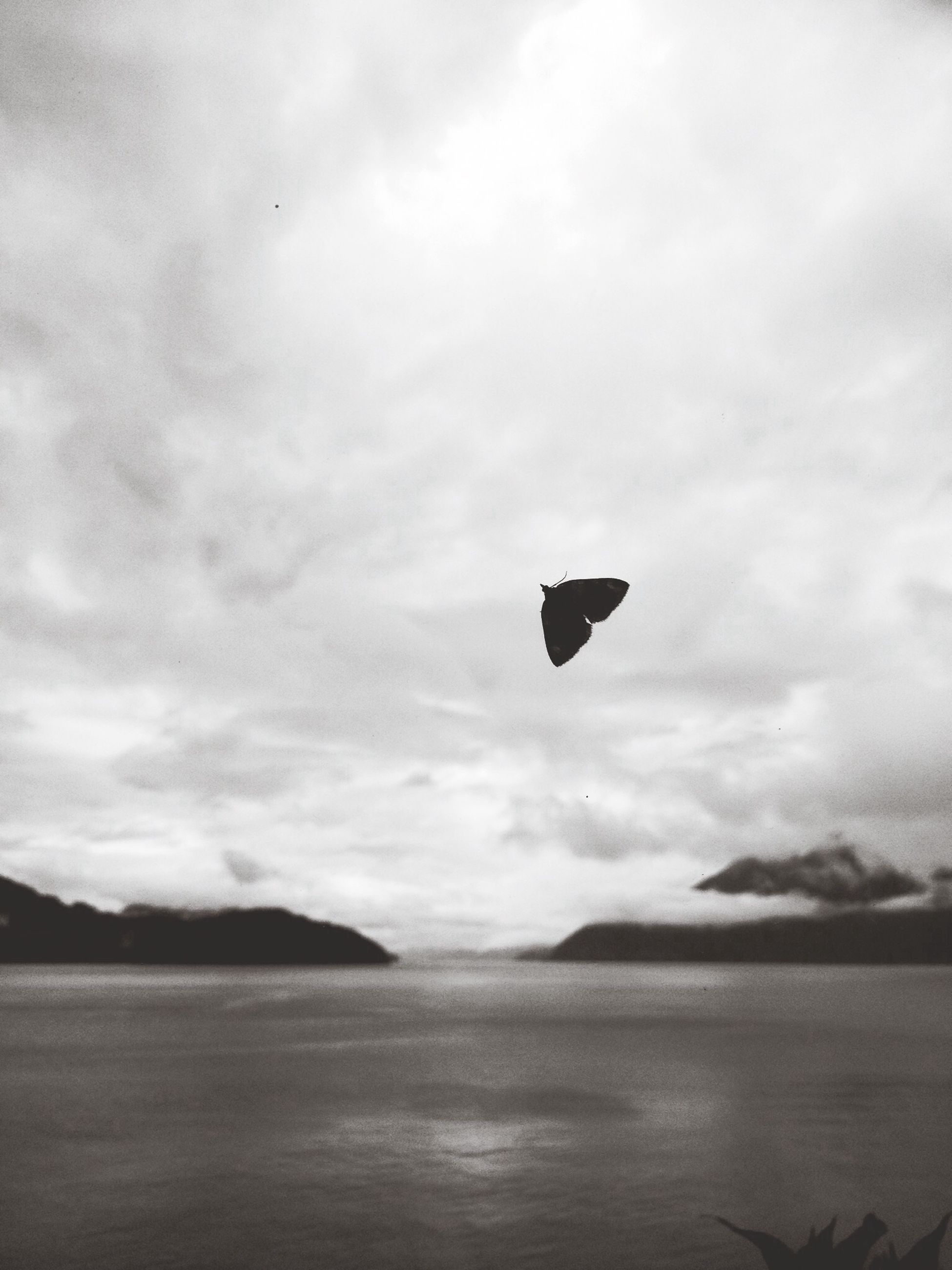 flying, sky, mid-air, tranquility, tranquil scene, scenics, cloud - sky, beauty in nature, bird, nature, one person, water, sea, adventure, cloud, parachute, paragliding, silhouette, cloudy, mountain
