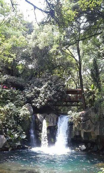 The Adventure Handbook Michoacan ParqueNacional