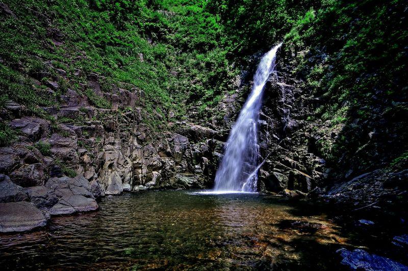 暗門の滝… 白神山地 Canon Aomori Hirosaki Water Tree Waterfall Motion Power In Nature Spraying