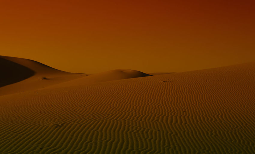 Sahara at sunset Desert Sand Climate Land Scenics - Nature Landscape Arid Climate Sand Dune Beauty In Nature Tranquility Tranquil Scene Non-urban Scene Environment No People Sky Nature Remote Sunset Orange Color Copy Space Outdoors Atmospheric Sahara Cinematic Morocco My Best Photo
