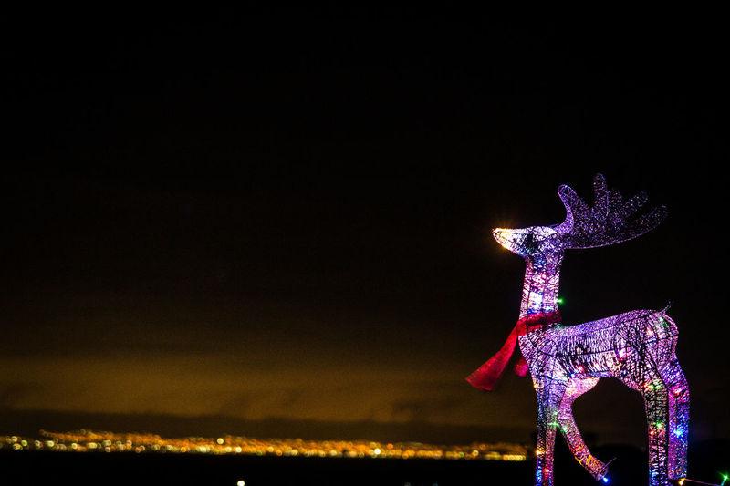Close-up of illuminated christmas lights against sky at night