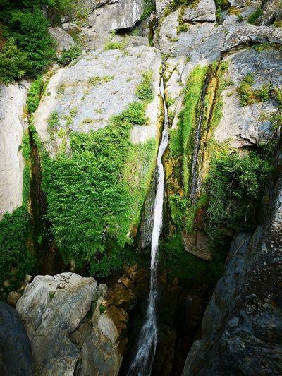 Water Moss Rock