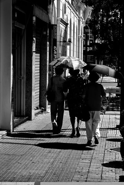 Adult Architecture Building Exterior Built Structure City Day Full Length Large Group Of People Leisure Activity Lifestyles Men Monochromatic Old Ladies Outdoors People Real People Rear View Street Streetphotography Togetherness Walking Women The Photojournalist - 2018 EyeEm Awards The Street Photographer - 2018 EyeEm Awards