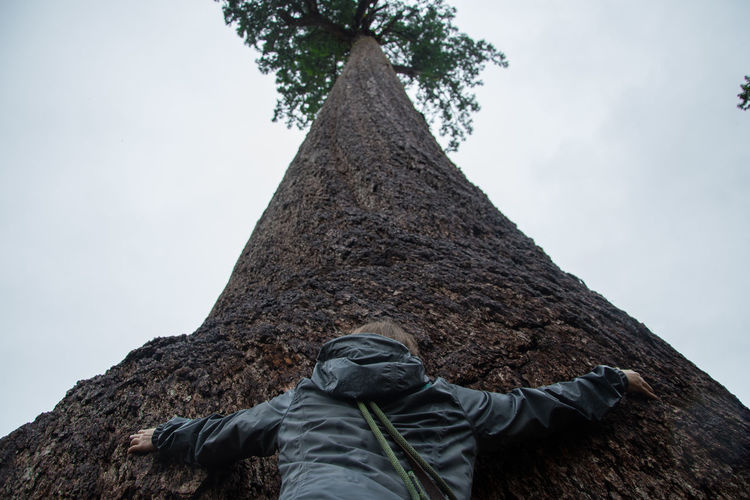 Low angle view of woman hugging large tree against sky