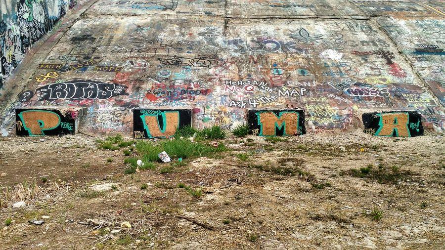 Please Understand My Art Puma Graffiti One Of A Kind  Awesome Wall Graffiti
