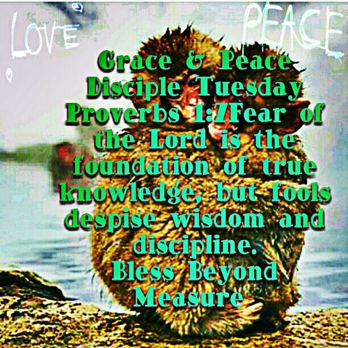 Grace & Peace Disciple Tuesday