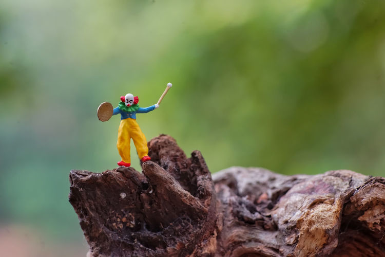 Close-up of toy on rock