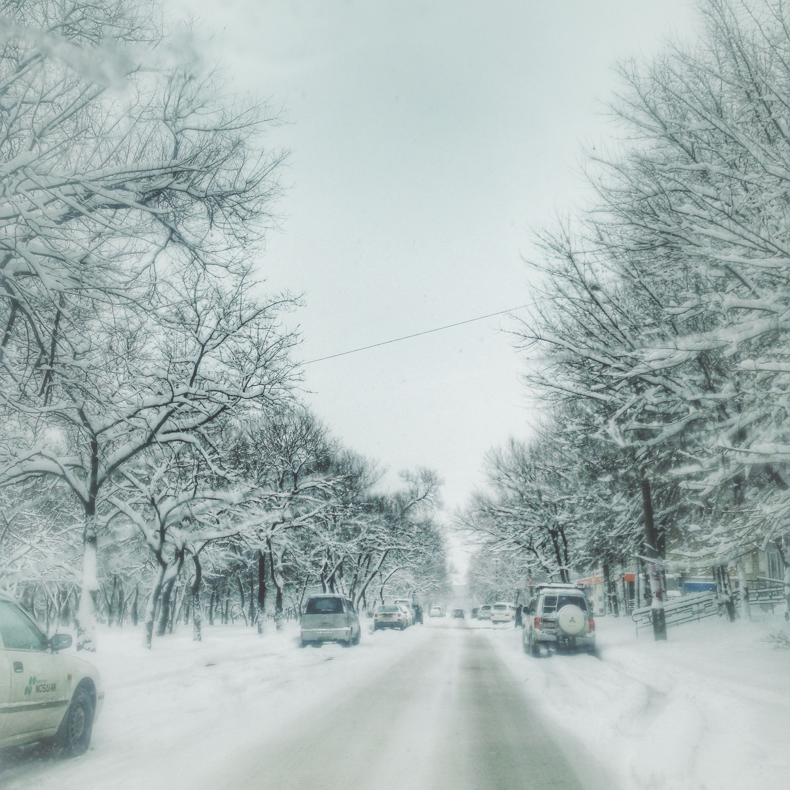 snow, winter, cold temperature, transportation, the way forward, road, season, weather, tree, car, land vehicle, mode of transport, covering, diminishing perspective, bare tree, vanishing point, street, nature, clear sky, white color