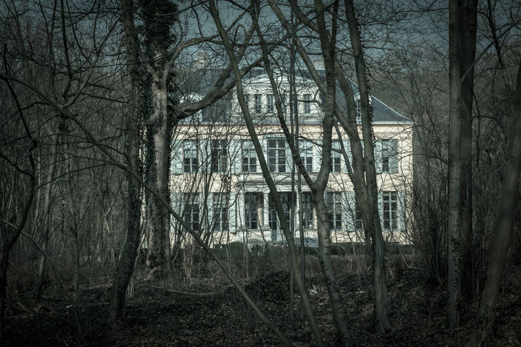 Abandoned Architecture Building Exterior Forest Hidden Hidden Places House Nature Old Residential Structure Tree