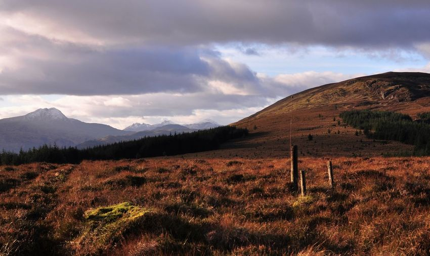 Ben Lomond In Scotland Cloud Scotland Scotland Highlands View Beauty In Nature Ben Lomond Cloud - Sky Day Grass Landscape Mountain Nature No People Outdoors Scenics Sky Skyes Tranquil Scene Tranquility