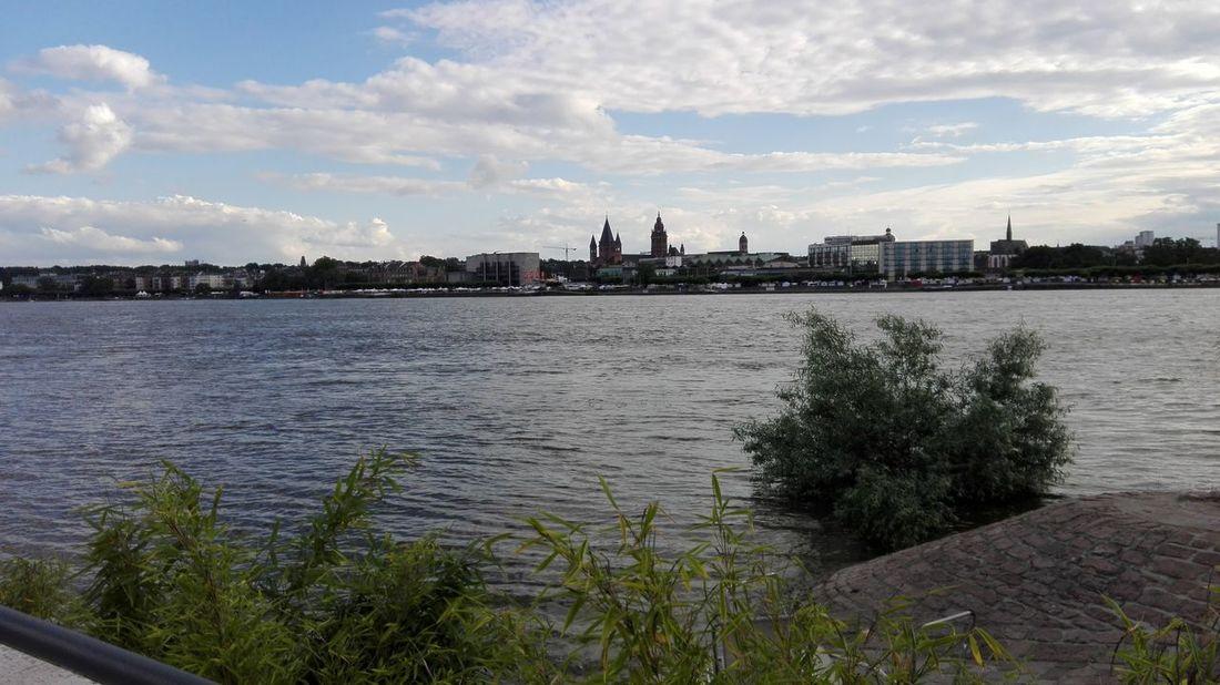 Rhein Mainz Germany Hochwasser 2016 Mainz-Kastel Wasser Blauer Himmel