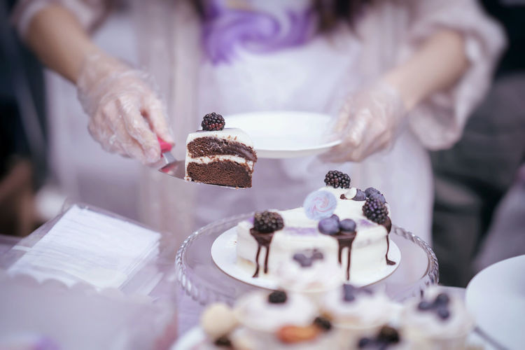 Slice of delicious chocolate cake with cream and blackberries, plate in hand, fresh summer dessert, selective focus Chocolate Dessert SLICE Snack Sweet Pie Tart Baked Bakery Baking Berry Biscuit Cake Calorie Confectionery Dessert Eat Food Fresh Hand Human Hand Pie Piece Plate Sweet Sweet Food