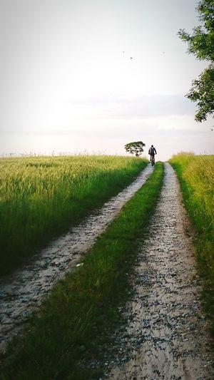 Adventure Ride A Bike  Besttime Bike Tour Friends Pathway Pathway To Heaven